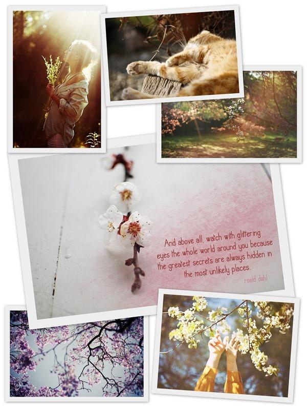 spring, весенние картинки, счастье в картинках, фото коллаж