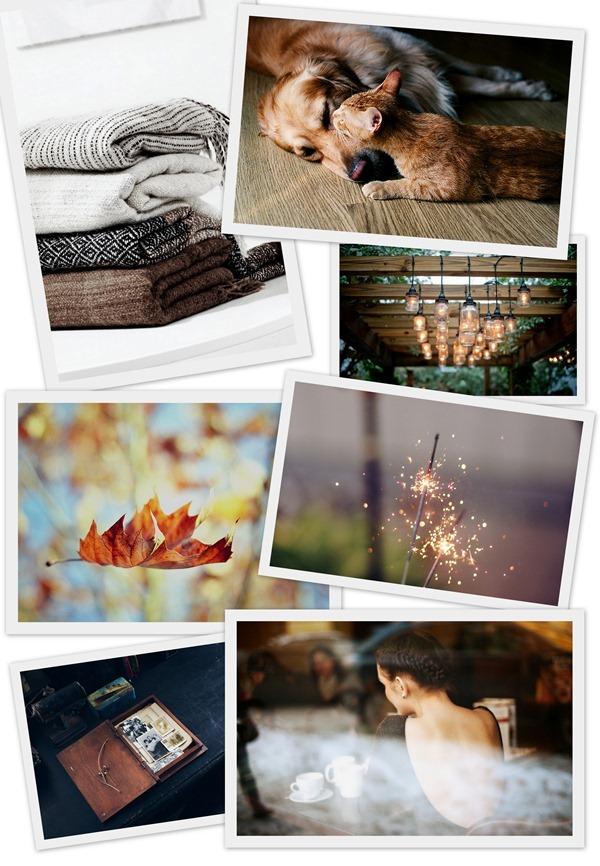 Счастье осенью, осенние поводы для счастья, фоллаж из фото осени.