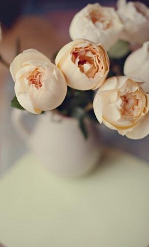 Фото букета цветов в бежевых тонах